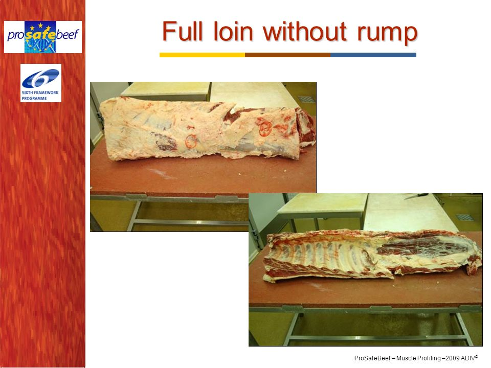 Full loin without rump 23