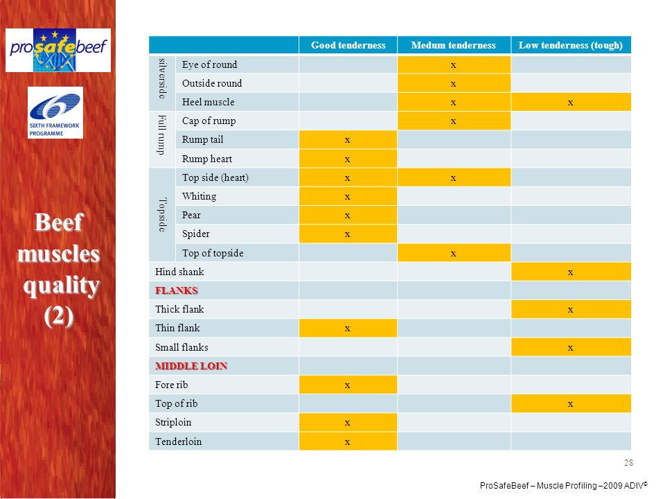 Beef muscles quality (2)