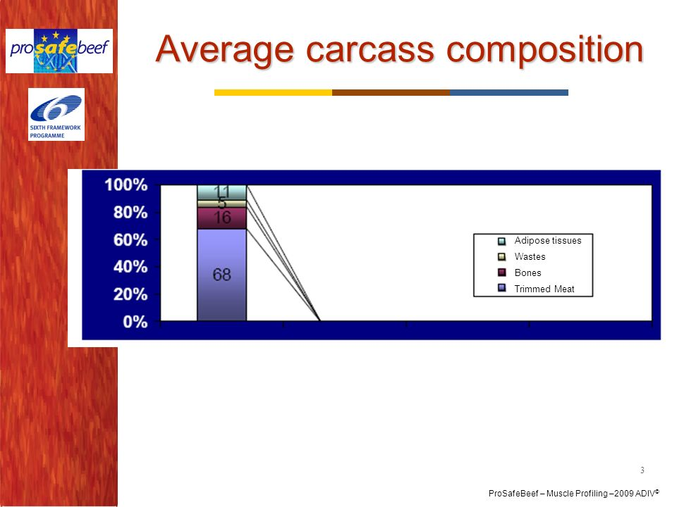 Average carcass composition