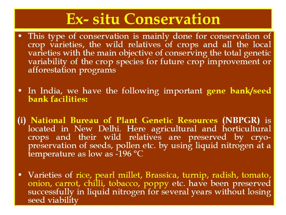 main objectives of conservation