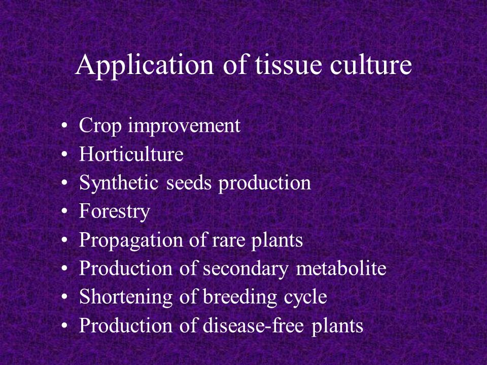 Ppt plant tissue culture powerpoint presentation id:6591980.