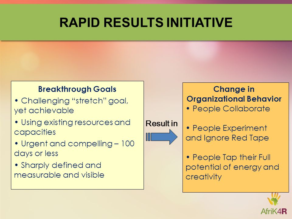 rapid results initiative template