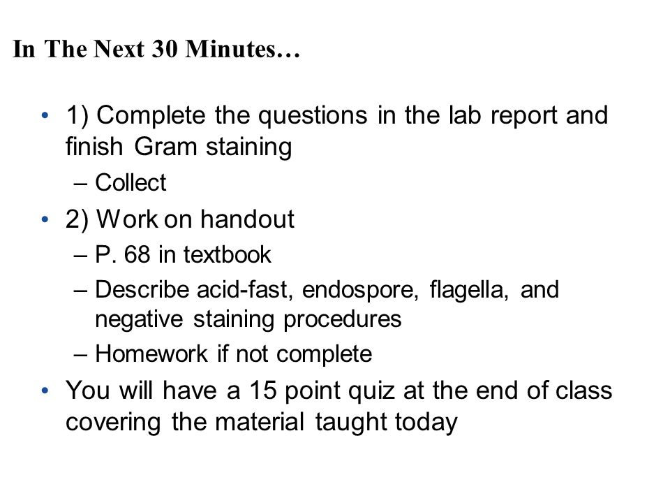 gram staining lab report answers