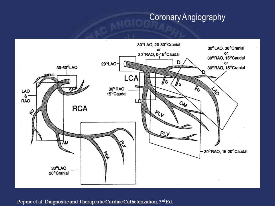 Attractive Cardiac Cath Anatomy Gallery - Image of internal organs ...