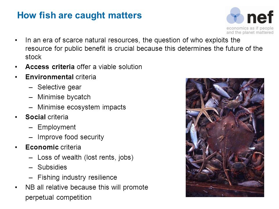 How fish are caught matters