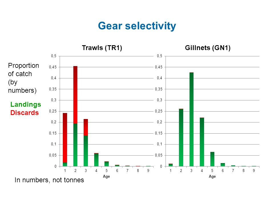 Gear selectivity Proportion of catch (by numbers) Landings Discards