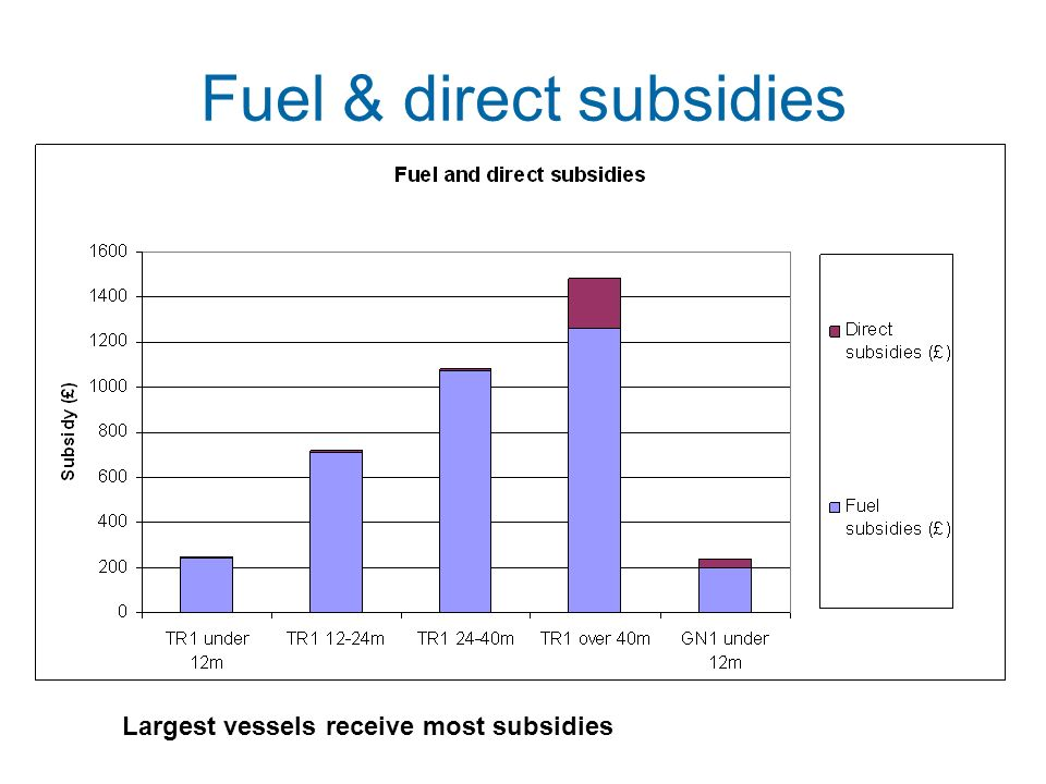 Fuel & direct subsidies