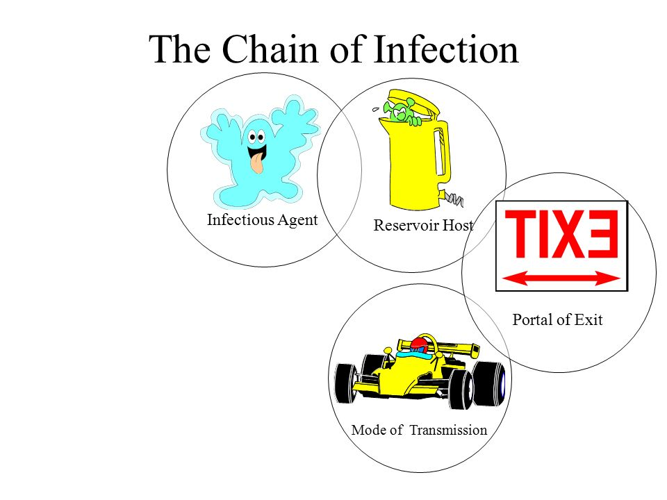 The Chain Of Infection Infectious Agent Ppt Video Online Download