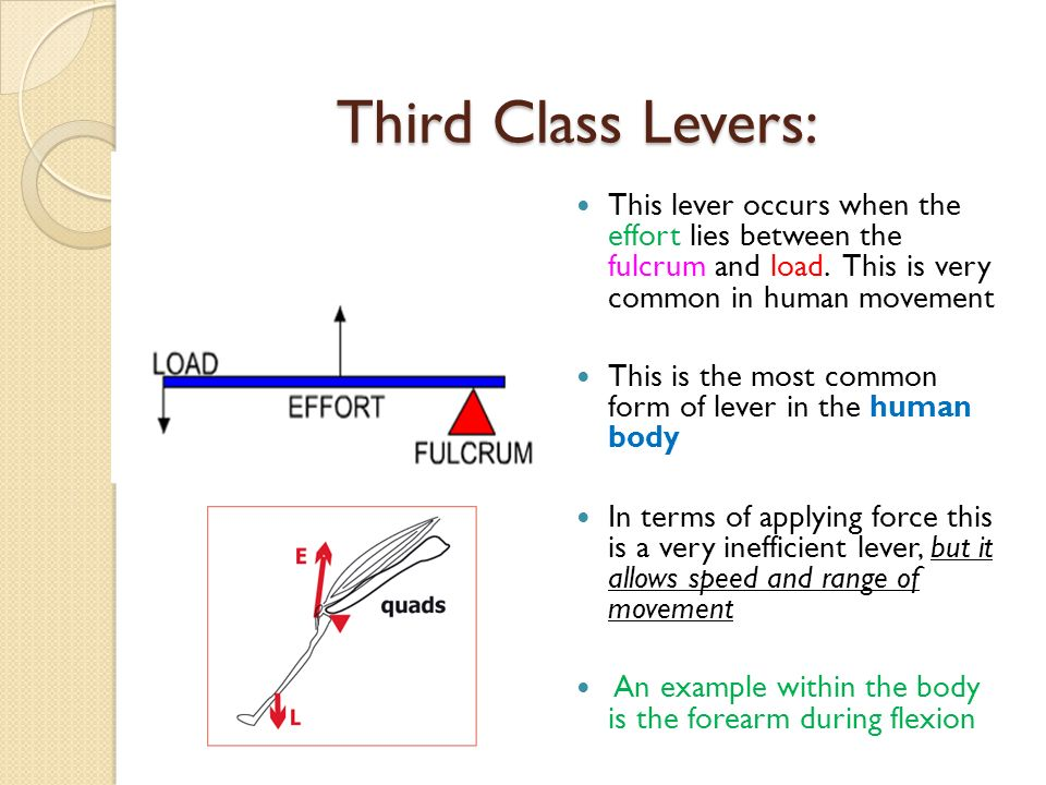 Wednesday 6th July 2016 Lever Systems Ppt Video Online Download