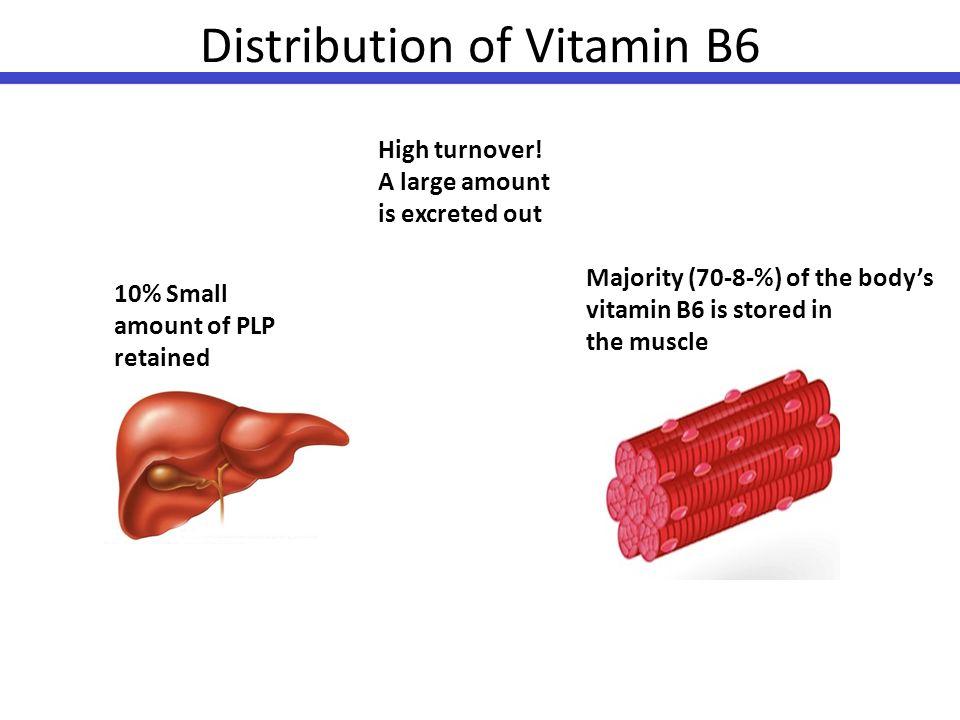 Vitamin B6 Metabolism Nishita Mohan Bbs G1 Ppt Download