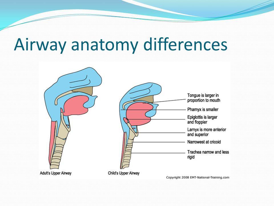 Pediatric Airway Management - ppt video online download