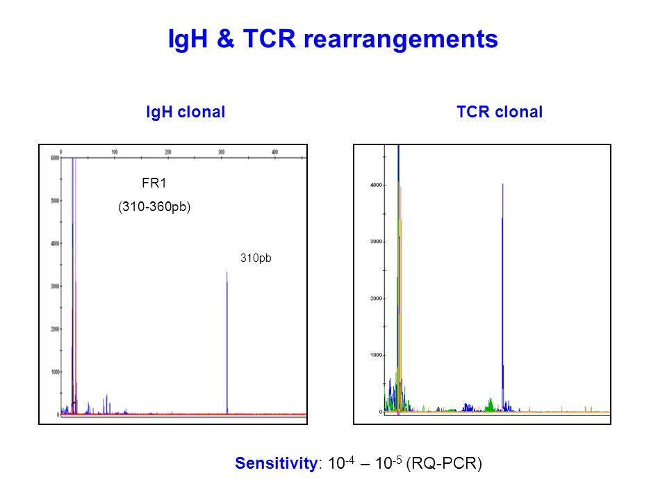 IgH & TCR rearrangements