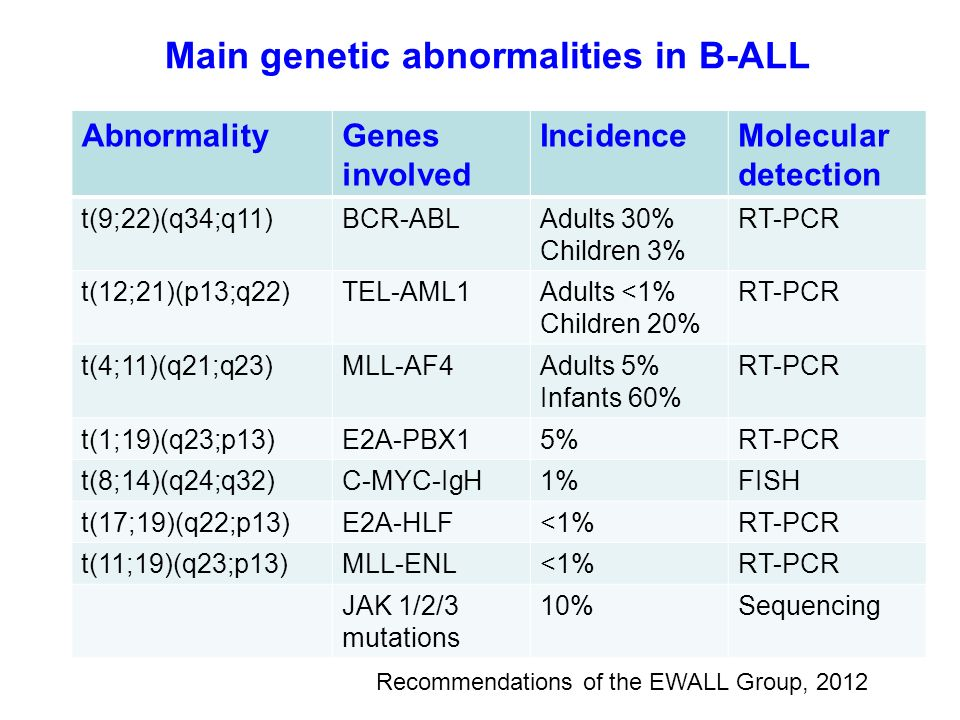 Main genetic abnormalities in B-ALL