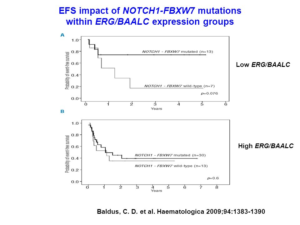 EFS impact of NOTCH1-FBXW7 mutations