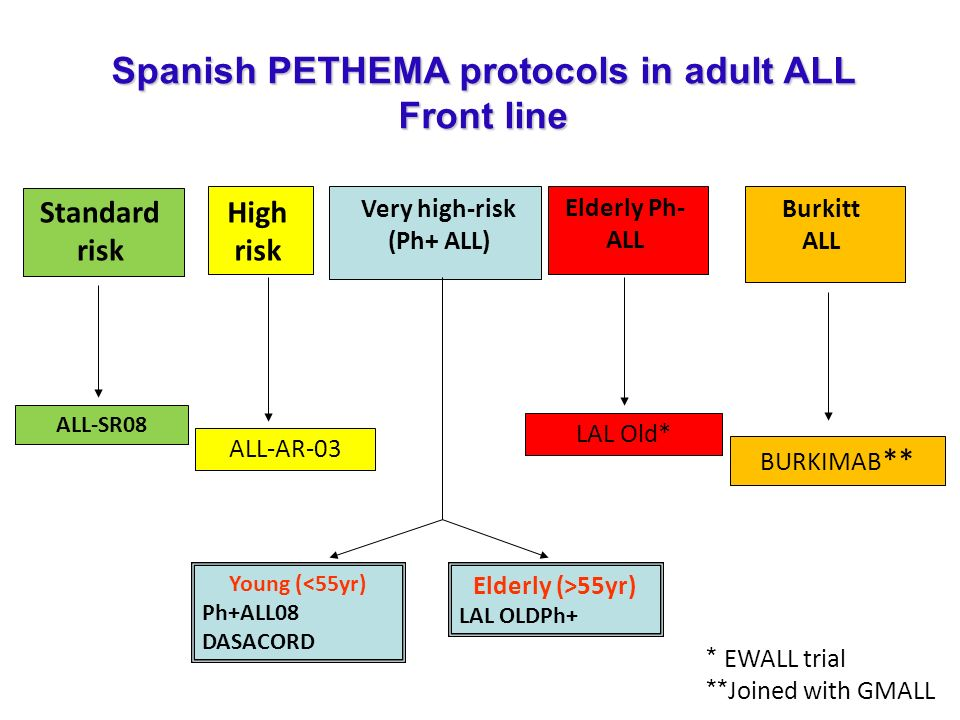 Spanish PETHEMA protocols in adult ALL Front line
