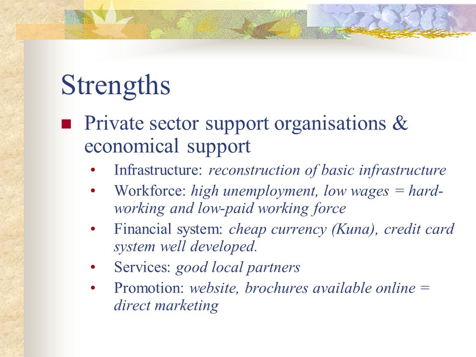 Strengths Private sector support organisations & economical support