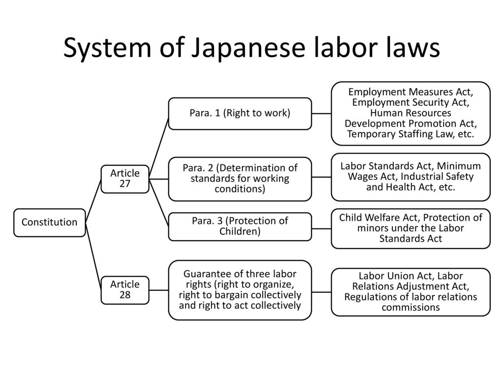 What is the system of labor law system of labor law: the definition and scheme 34