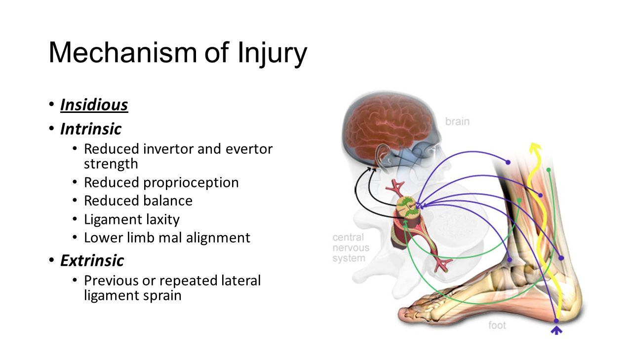 Lateral Ankle Sprains And Chronic Ankle Instability Ppt Video