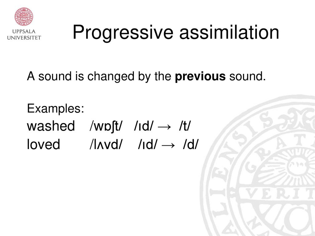 Introduction To Phonetics And English Phonology Ppt Video Online