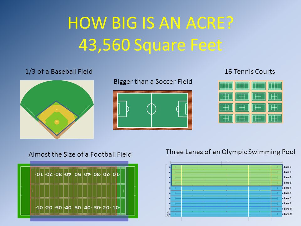 How big is an acre 43 560 square feet ppt video online download for Swimming pool square footage calculator