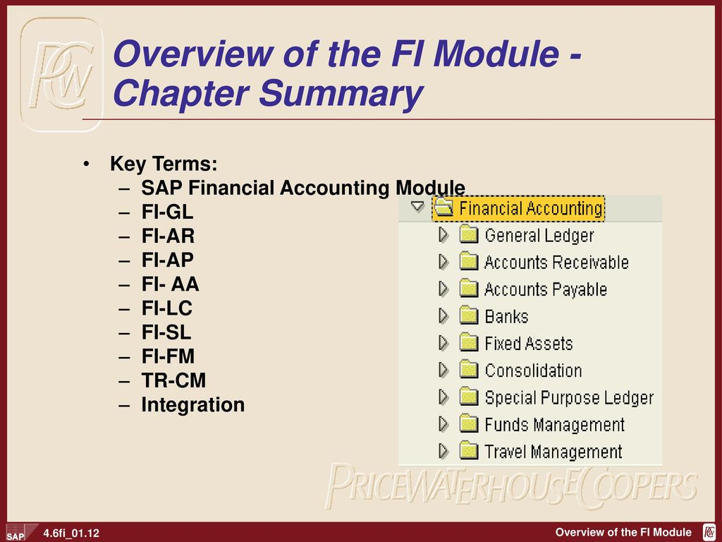 Overview of the FI Module - Chapter Summary