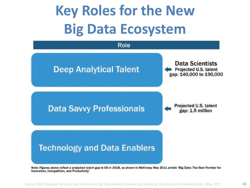 Key Roles for the New Big Data Ecosystem