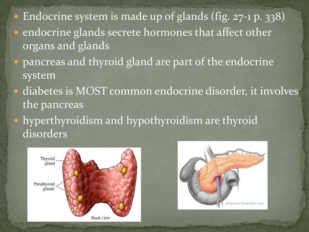 Chapter 27 Drugs Used to Treat Diabetes and Thyroid Disease - ppt ...