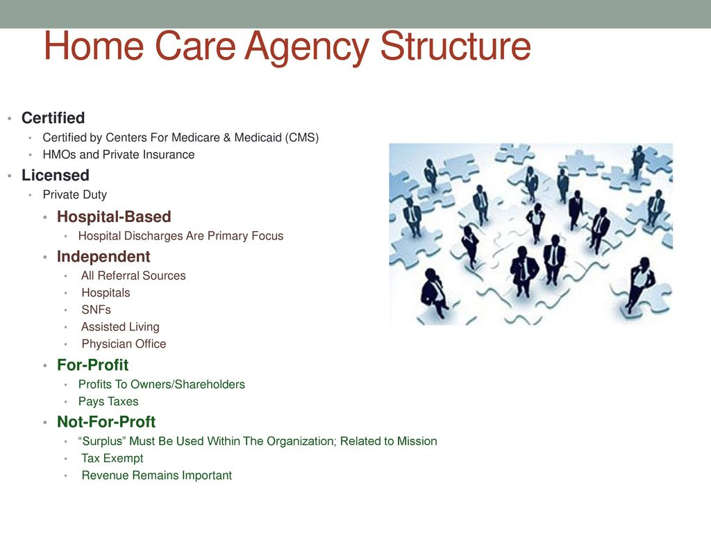 Home Health Care Ppt Download