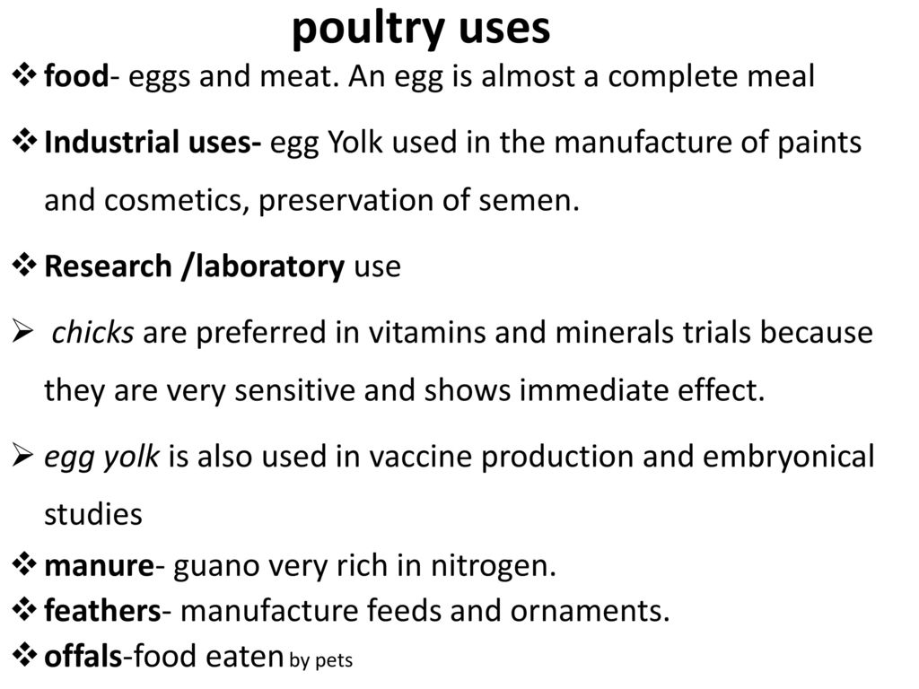 Poultry Production Course - ppt download
