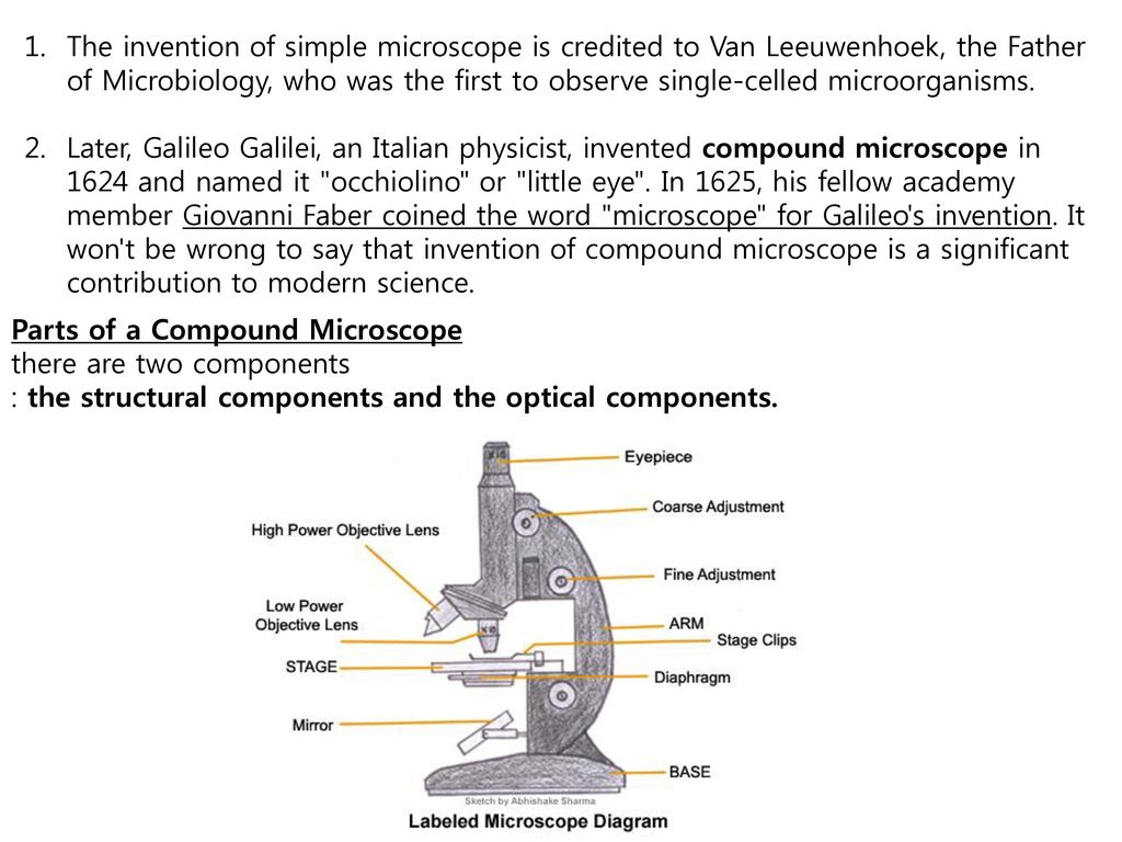 Introduction to microscopes ppt video online download the invention of simple microscope is credited to van leeuwenhoek the father of microbiology ccuart Gallery