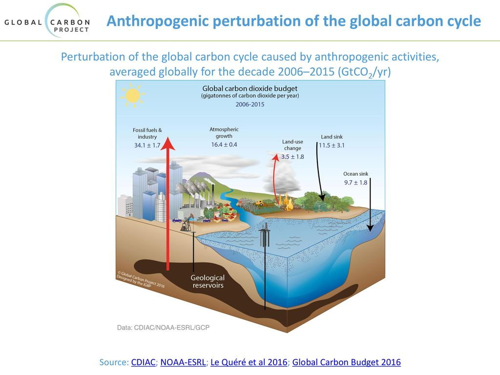 Anthropogenic perturbation of the global carbon cycle