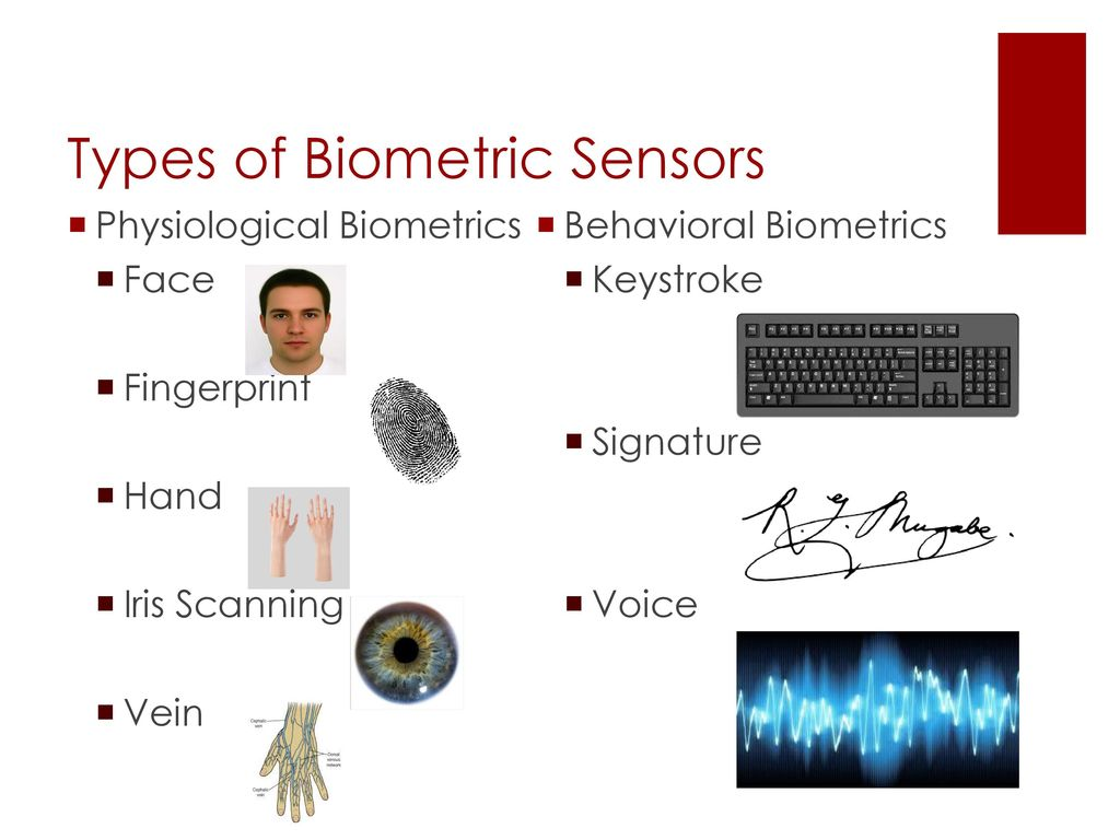 8 Types Of Biometric Sensors