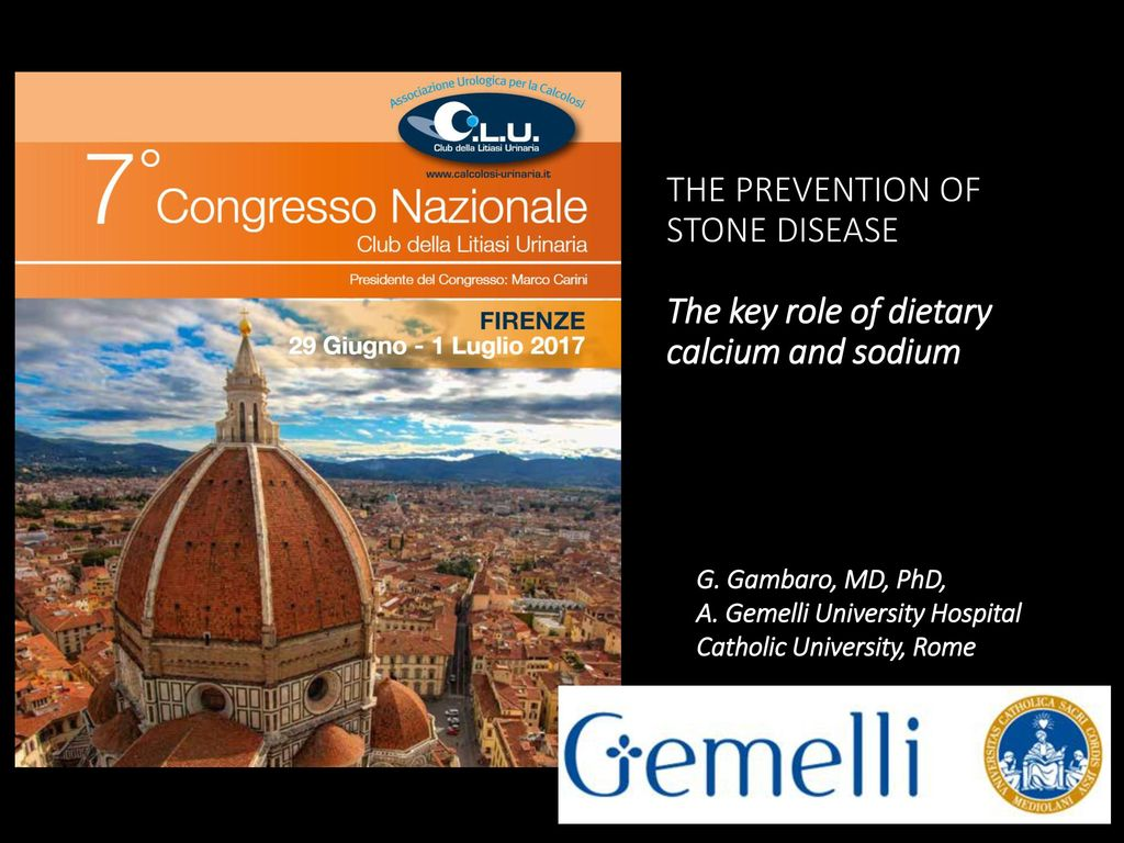 WORKSHOP LIFESTYLE AND DIET IN THE PREVENTION OF STONE