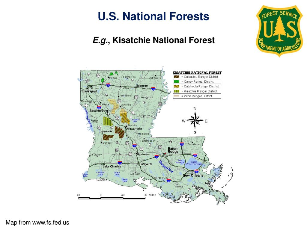 Protected Areas. - ppt video online download on chattahoochee national forest maps, hiawatha national forest maps, dixie national forest maps, malheur national forest maps, george washington national forest maps, tahoe national forest maps, beaverhead-deerlodge national forest maps, talladega national forest hunting maps, chippewa national forest maps, plumas national forest maps, inyo national forest maps, shawnee national forest hunting maps, bankhead national forest trail maps, hoosier national forest hiking maps, wayne national forest maps, uncompahgre national forest maps, louisiana maps, cleveland national forest maps, great smoky mountains national park maps, sam houston national forest hiking maps,