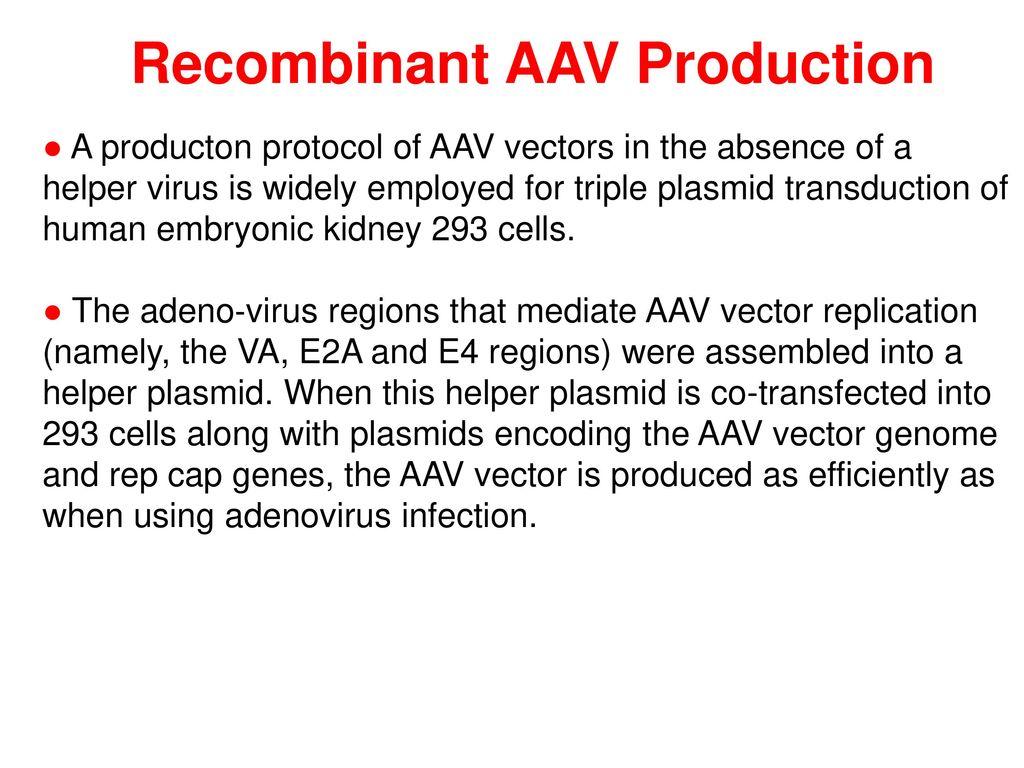 Adeno Associated Virus AAV Vectors