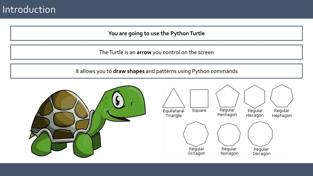 Using the Python Turtle - ppt video online download