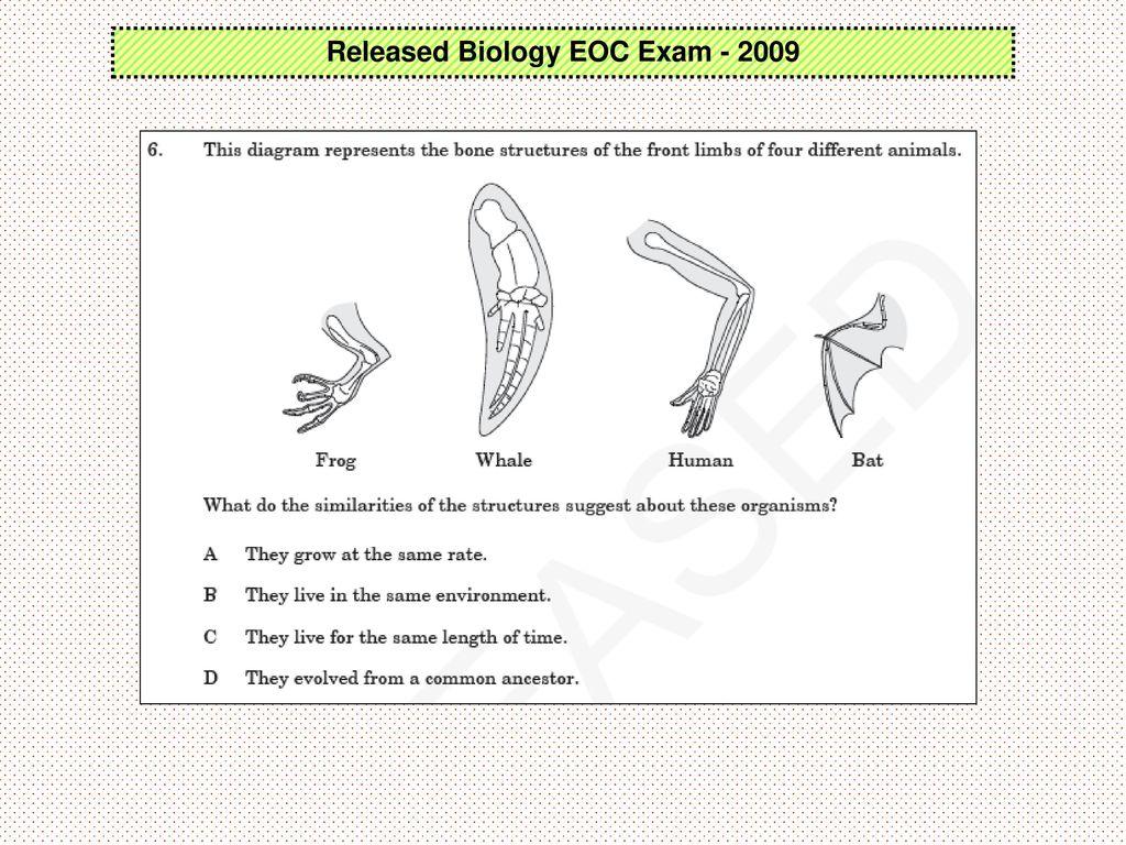 Released Biology EOC Exam