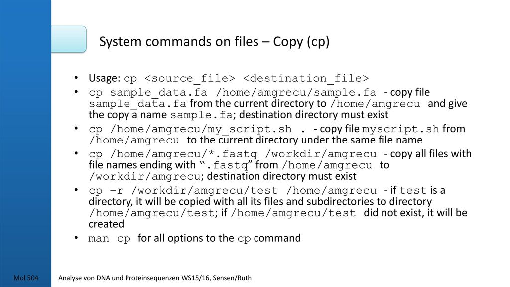 System commands on files – Copy (cp)