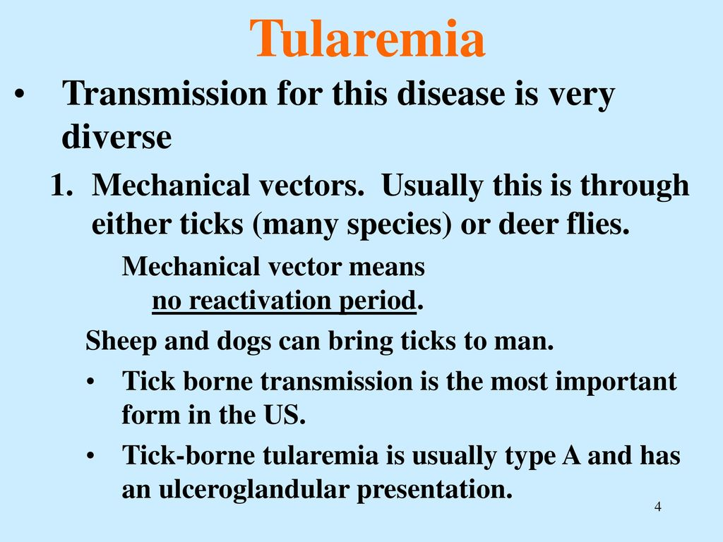Tularemia - what is it infectious diseases. Prevention, treatment 44
