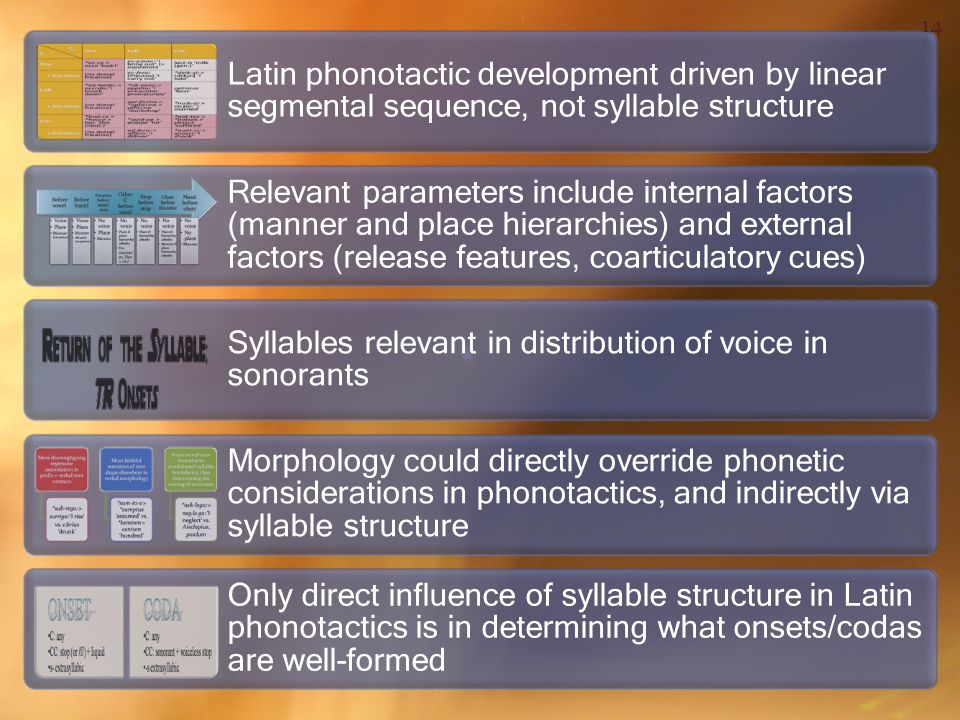 Latin phonotactic development driven by linear segmental sequence, not syllable structure