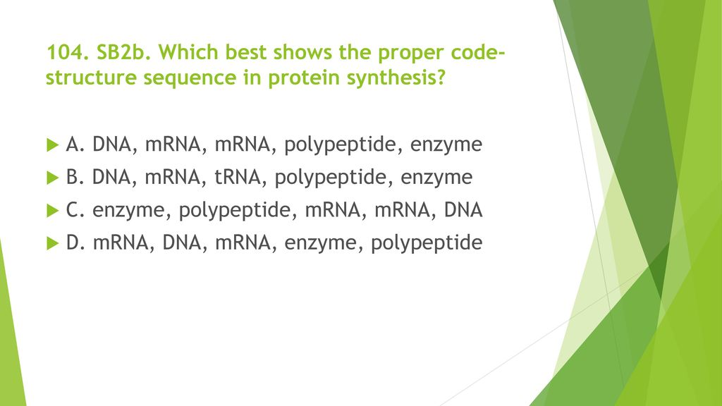 104. SB2b. Which best shows the proper code-structure sequence in protein synthesis