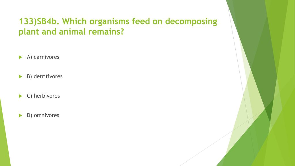 133)SB4b. Which organisms feed on decomposing plant and animal remains