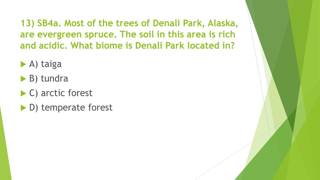 13) SB4a. Most of the trees of Denali Park, Alaska, are evergreen spruce. The soil in this area is rich and acidic. What biome is Denali Park located in