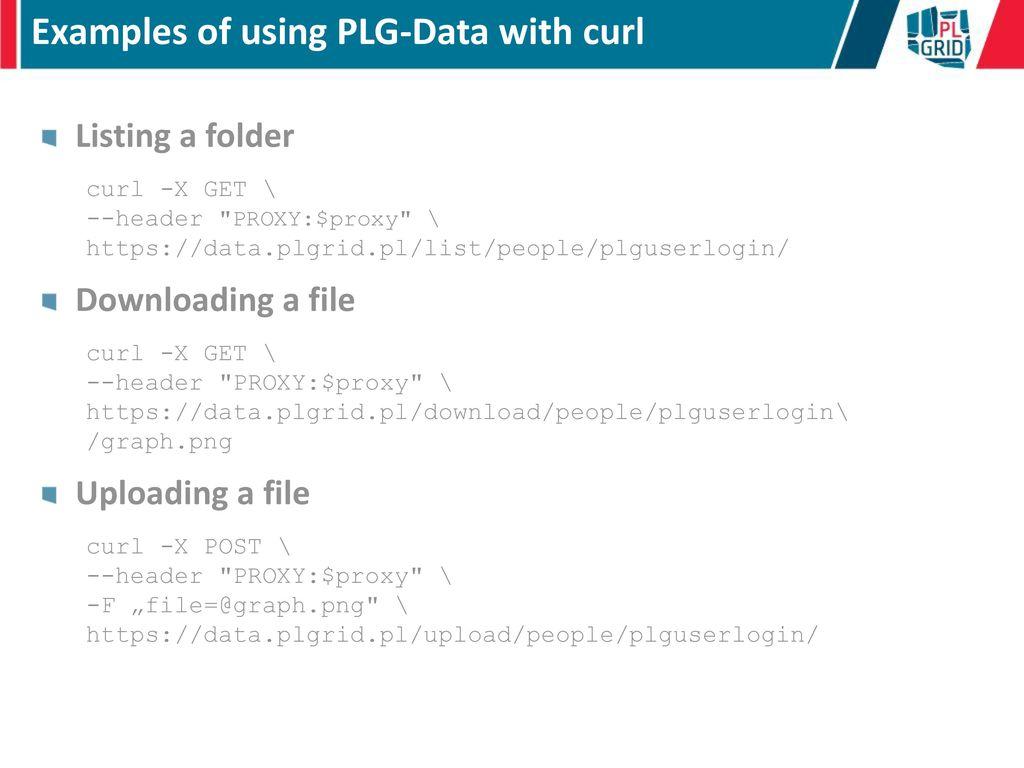 PLG-Data and rimrock Services as Building - ppt download