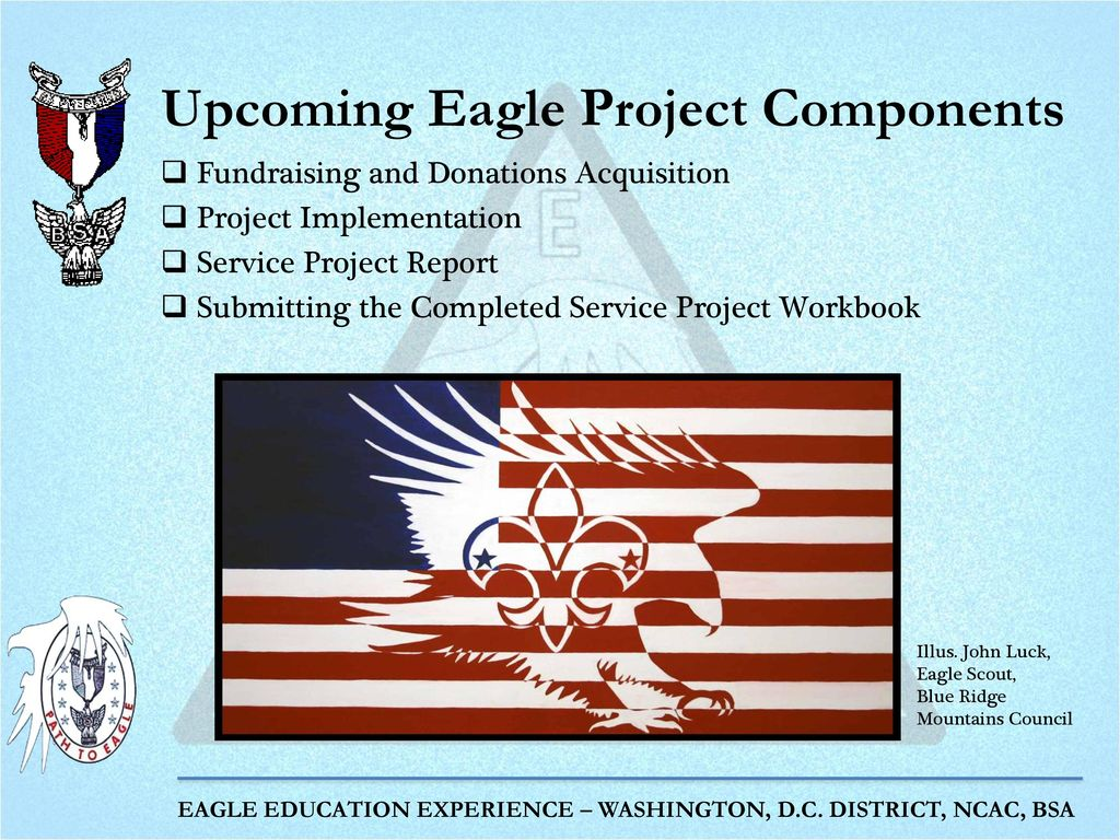 The Eagle Project Part 2: Project Proposal and Project Final Plan ...