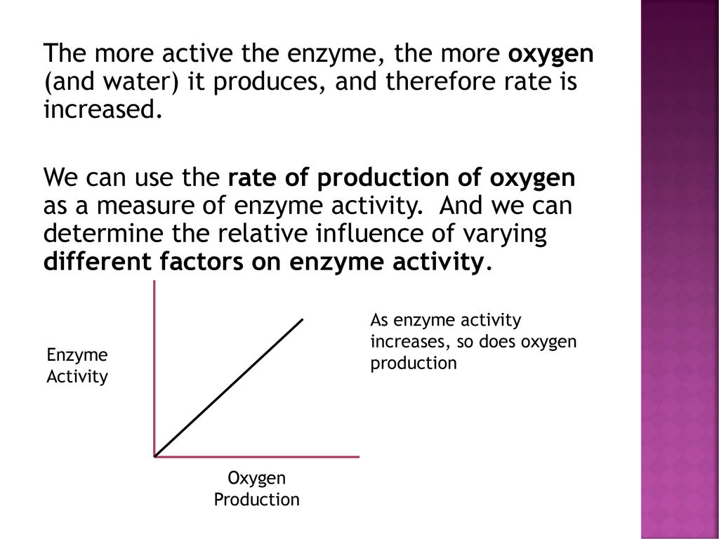 measurement of enzyme activity lab
