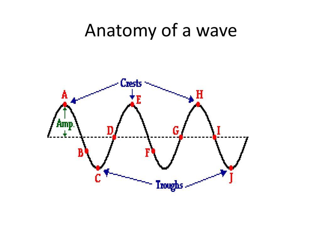 Waves. - ppt download