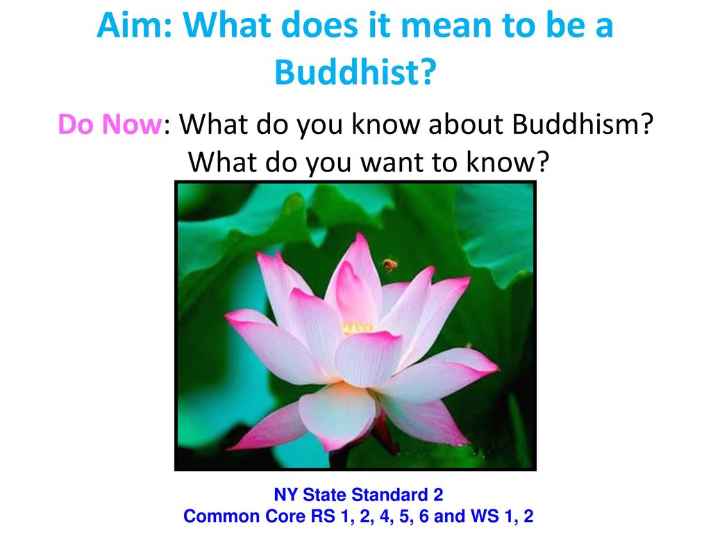 Aim What Does It Mean To Be A Buddhist Ppt Download