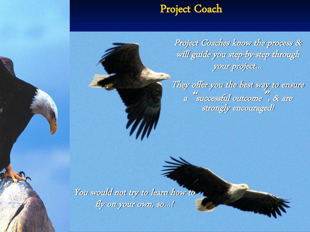"Trail to Eagle"" Eagle Encampment - ppt download"