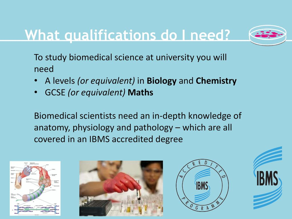 What is biomedical science? - ppt download